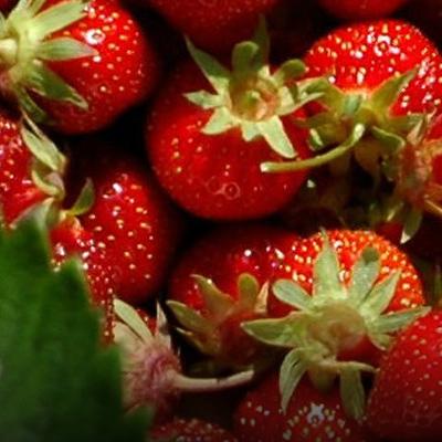 photo of fresh strawberriers